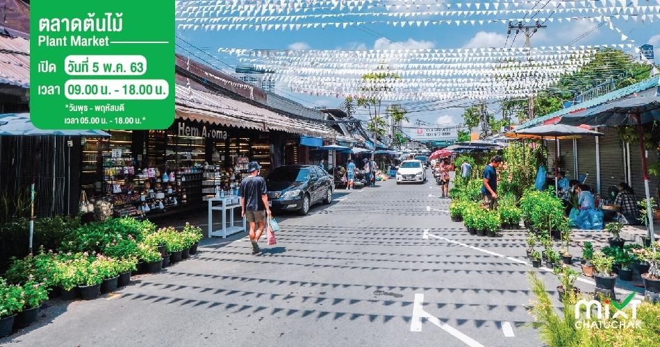 ตลาดต้นไม้ จตุจักร (Plant Market)