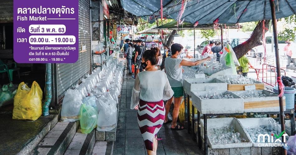 ตลาดปลา จตุจักร (Fish Market)