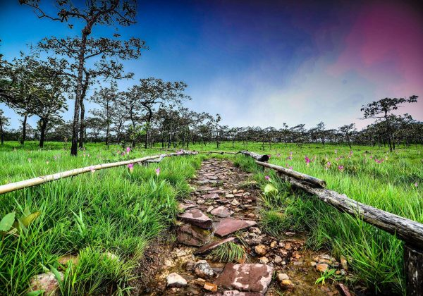5 สถานที่ท้องเที่ยวในเมืองชัยภูมิ